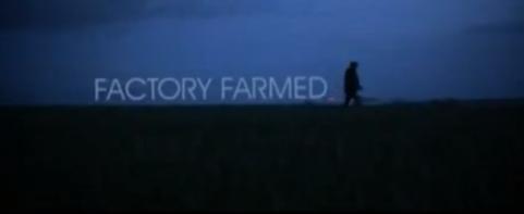 gareth-edwards-factory-farmed-1