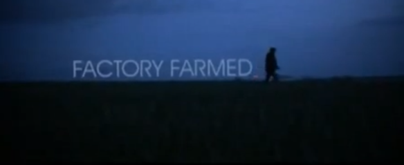 gareth-edwards-factory-farmed-1