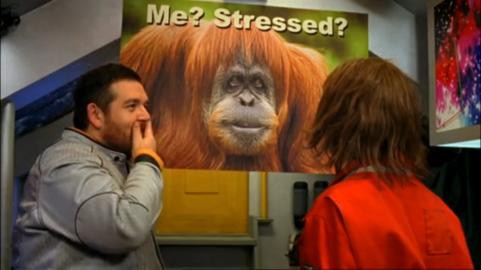 hyperdrive-bbc-episode-5-clare-orangutan-poster