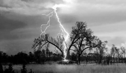 lightning-strikes-tree
