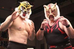 tiger masks