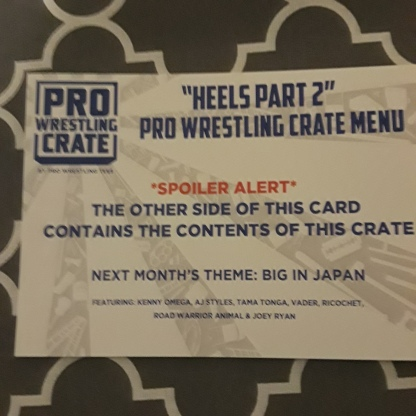 Pro Wrestling Crate july 2018 1