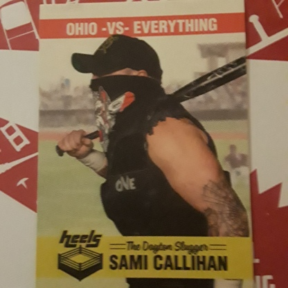 Pro Wrestling Crate july 2018 7