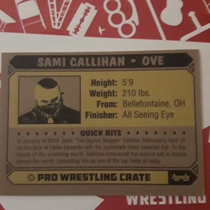 Pro Wrestling Crate july 2018 8
