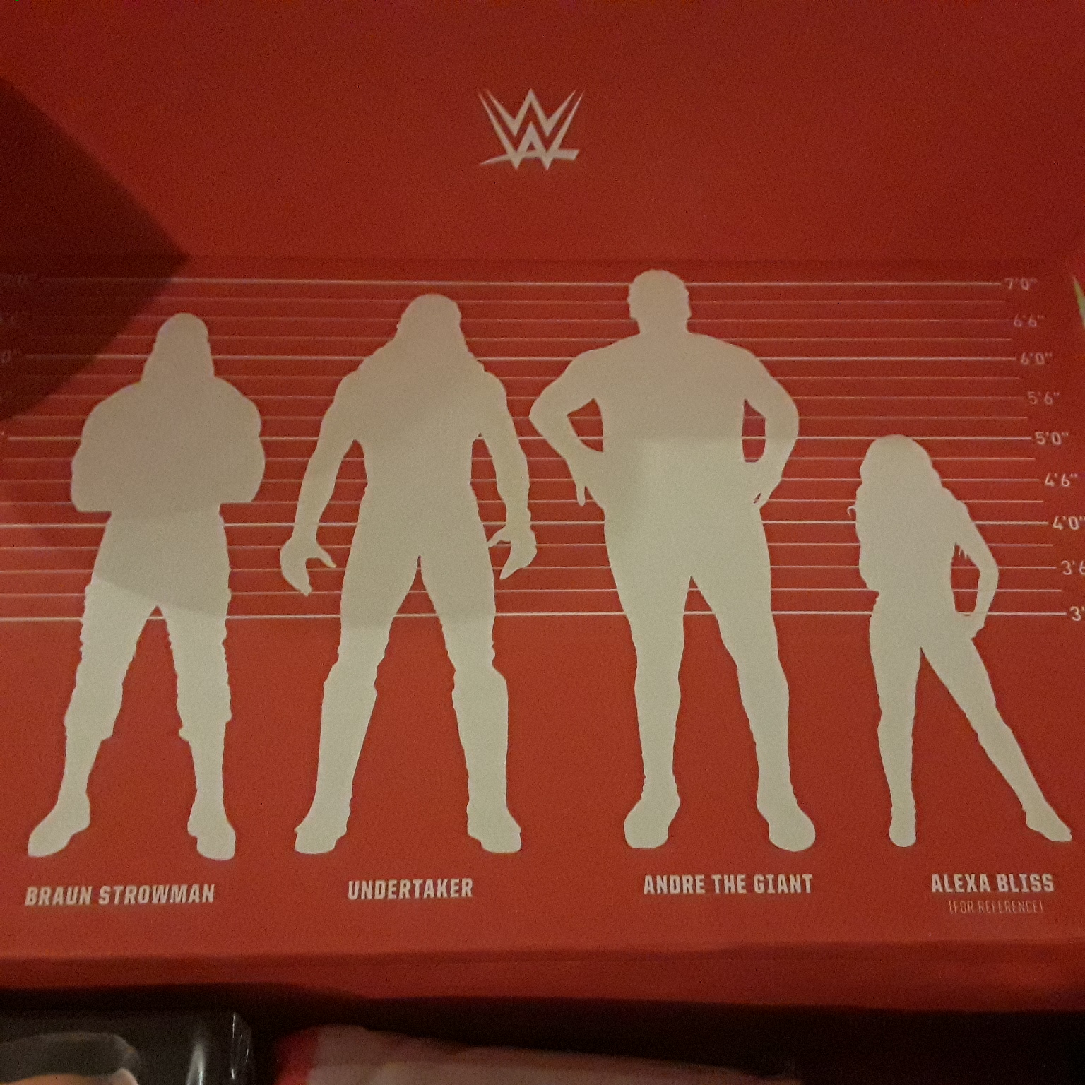 WWE Slam Crate 1